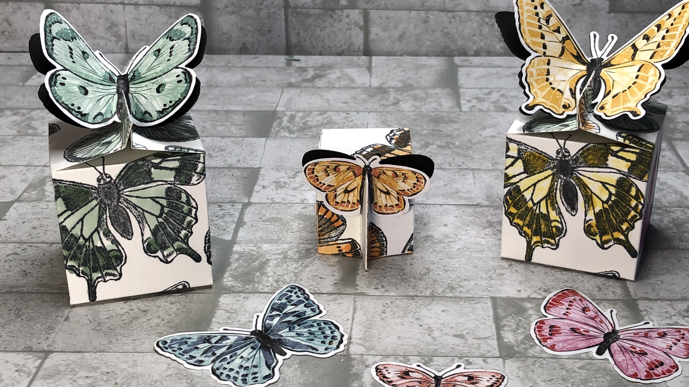 "Schmetterlingsbox mit dem Set ""Flügel voller Fantasie"""